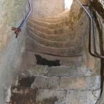 Gavaudun escalier